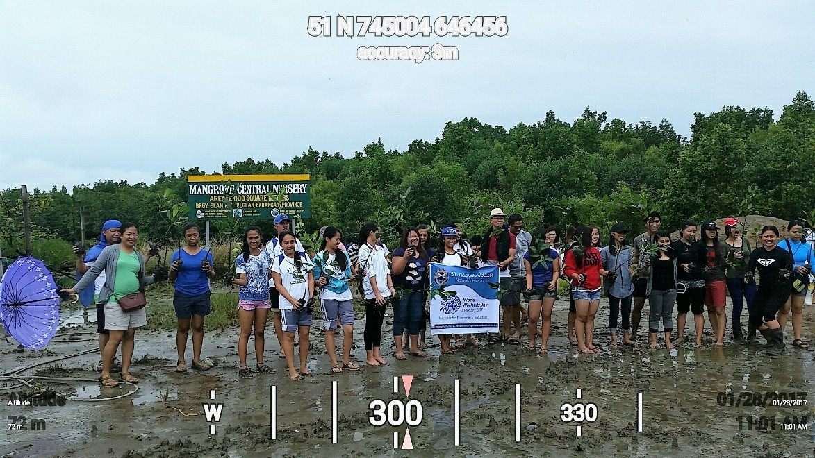students plant mangroves